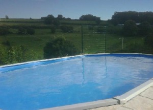 The Pool at Farmhouse in Salvecques